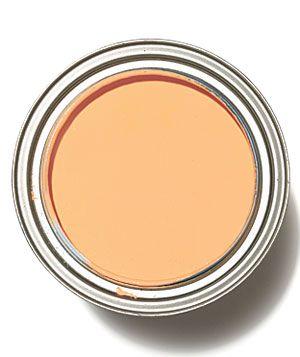 Pale Orange Paint 105 best orange>pumpkin>peach wall color images on pinterest