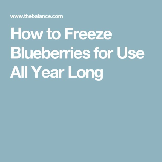 How to Freeze Blueberries for Use All Year Long