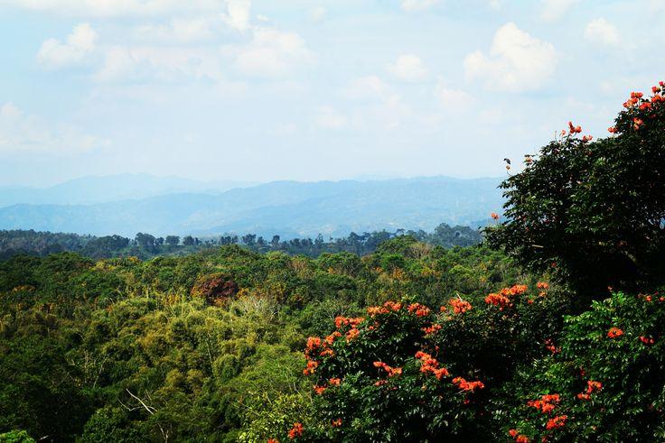 View @ gunung padang...