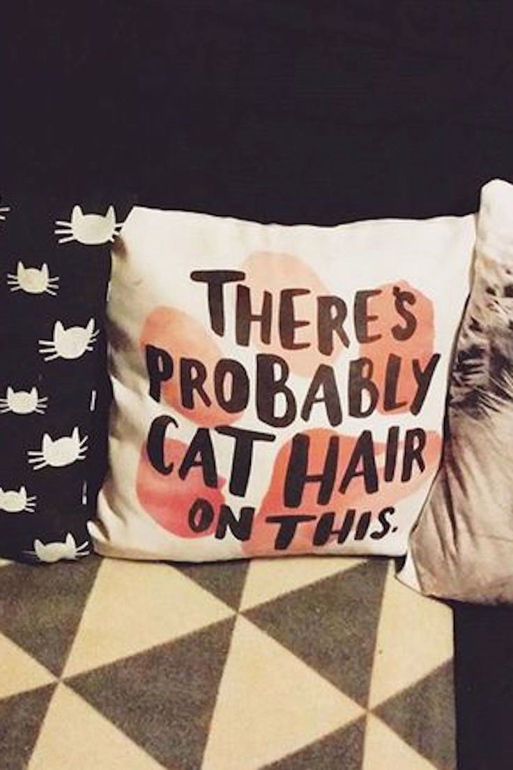 Haha this is truer than we'd like to admit... there's probably cat hair all over this place. Maybe Redbubble should start selling lint rollers with their cat designs? But we think the fur beautifies everything. Cat lovers for life.