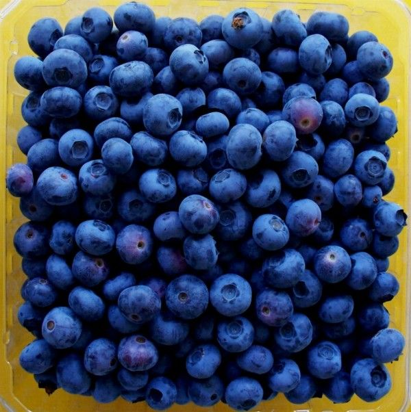 Top ten healthiest fruits to keep you fresh, healthy and full of life.