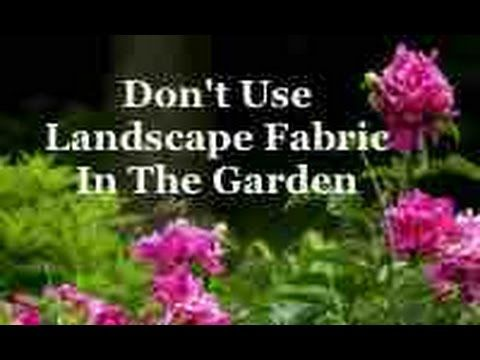 Don't Use Landscape Fabric In The Garden - YouTube