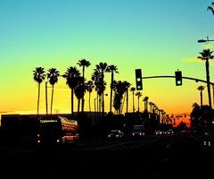 sunsets <3: California Sunsets, California Home, The Angel, Palms Trees, Santa Monica, Inspiration Pictures, Summer, Santamonica, Losangel