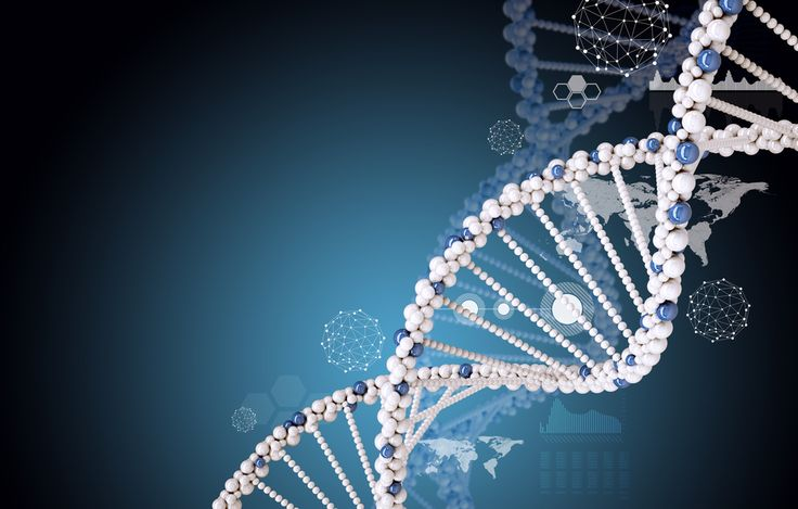 """School Accused Of """"Genetic Discrimination"""" After Excluding Student Because Of His DNA - A potentially landmark legal case is currently underway in the U.S., with a middle school in Palo Alto, California, having been accused of """"genetic discrimination"""" against a student. Though a district court initially dismissed the lawsuit in 2013, an appeal has now been filed which, if successful, could set a new legal precedent regarding the ways in which people's genetic information can be accessed and…"""