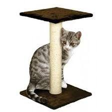 Resultado de imagen para gimnasio para gatos casero