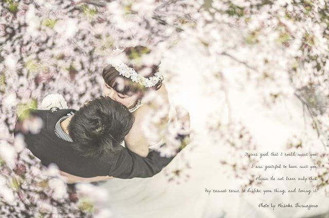 studioTVB堀江店 下園啓祐(@keisuke_shimozono) Photo_by_keisuke_shimozono #d_weddingphoto#keisuke_shimozono#studiotvb#wedding#結婚写真#プレ花嫁#前撮り#チャペル#dress#大阪#結婚#こだわり#カメラ#結婚写真#photo#dress#カメラ女子#かわいい#osha#オシャレ#horie#citygirl #ポートレート#giroux#桜#sakura