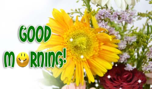 Love Good Morning Wishes With Flowers