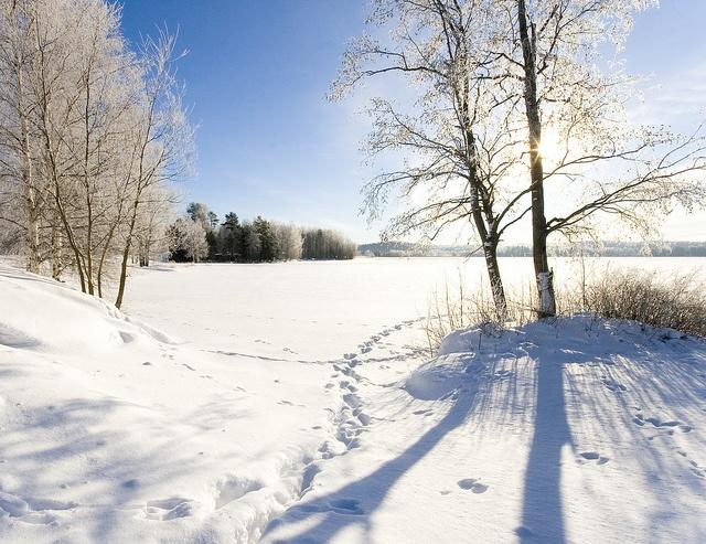 finnish countryside #winter #snow #finland