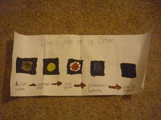 Kid Video Life Cycles Magic Tree House