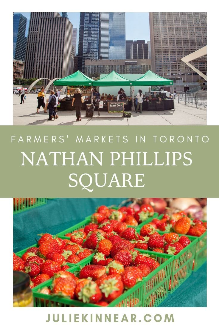 Farmers' Markets in Toronto: OFFMA at Nathan Phillips Square