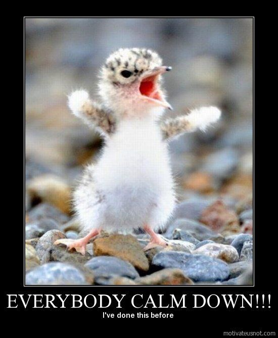 Quotes About Anger And Rage: Quotes Funny Calm Down. QuotesGram