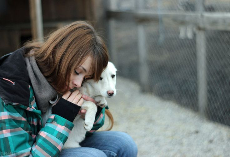 #dog #adopt #shelter #puppy