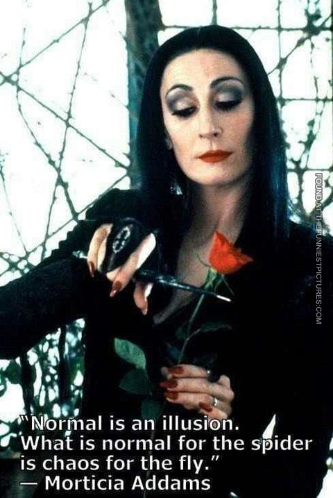 """Normal is an illusion.  What is normal for the spider is chaos for the fly.""--Morticia of Addams Family.  Family archetypes that value individuality, living with sincerity, integrity without a thought towards herd disapproval.  Angelica Houston, goth queen, lifestyle, social moral relativism, cutting roses"