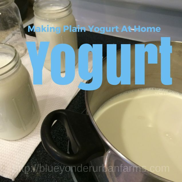 Making Plain Yogurt At Home - How To Make Yogurt At Home Using Your Stove Top Oven http://blueyonderurbanfarms.com/3613/how-to-make-yogurt-at-home-using-your-stove-top-oven/