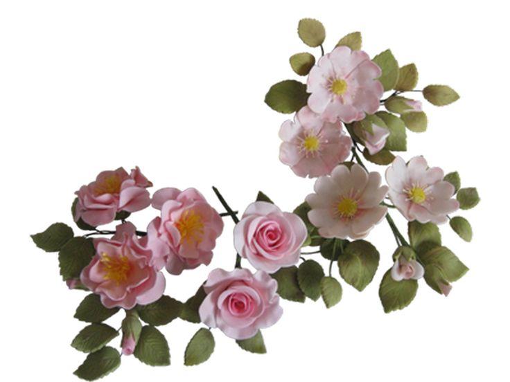Gum Paste Sugar Roses   #sugarflowers #sugarart #sugarcraft #cakeart #cakedecorating #sugarflower #cakeartist #sugarpaste #sugarartist #gumpaste