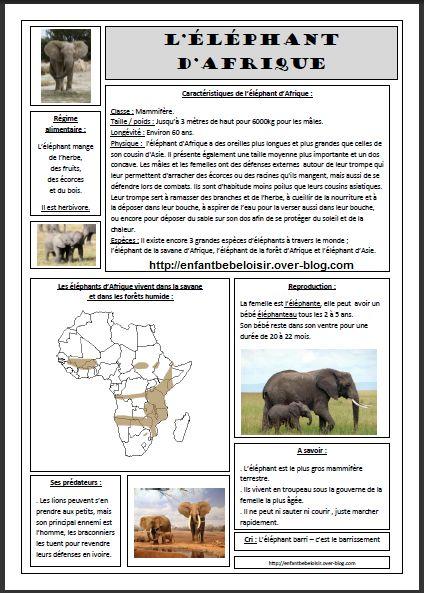 """Hello ! Notre thème de Février - Mars 2016 pour Inaya 4ans et Jassim 2ans sera """" Voyage en Afrique """"! En attendant le vrai départ je prépare quelques fiches d'identité sur les principaux animaux d'Afrique. Aujourd'hui je partage avec vous la fiche de..."""