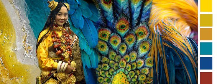 Tibet Feathers  Tibet, de Dragon Woman met prachtige gelen en gouden nuances is de inspiratie. De nadruk ligt op de verfijning van materiaal en ambacht in combinatie met de kleuren en structuren van veren. Het levert een beeld op dat ons kracht geeft in combinatie met zachtheid.