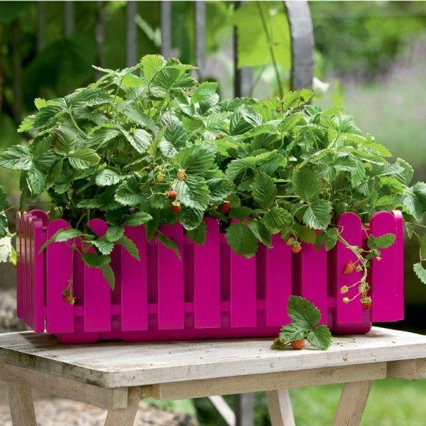 Ideen Für Einen Schönen Blumenkübel  Holz Rosa Gartengestaltung