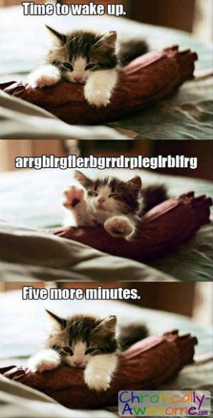 It's really hard to get out of bed in the morning… and always! http://www.chronically-awesome.com/16-things-chronic-pain/ 