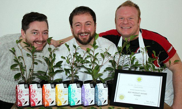 Scottish-grown tea named the best in the world.