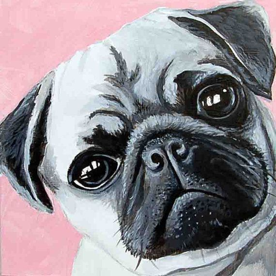 TELL ME I'M PRETTY cute pug giclee fine art print available in two sizes