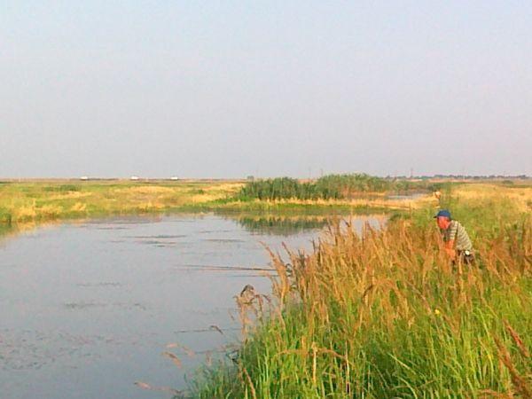 Zile de vara, la tara: la pescuit
