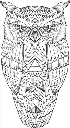 684 Best Coloring Owls Images On Pinterest