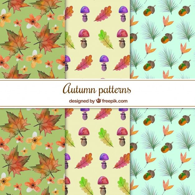 Free vector Watercolor patterns with autumnal elements #22539