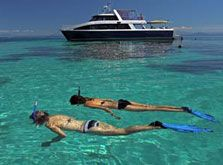 Plenty of snorkeling!