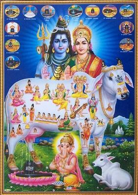 "Shiva Parvati Ganesh, Hindu Gods Goddess, Divine Cow - POSTER - 11""x16"" (#SFK1)"