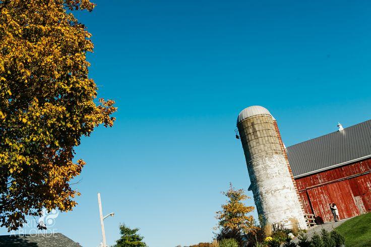 Fall wedding at Cambium Farms!