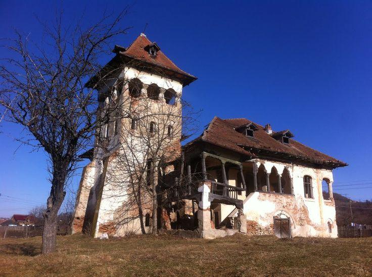 Castelul boierului Doru Gogulescu din Lucieni, Argeş