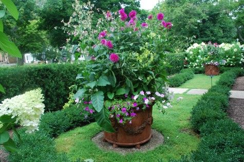 I am going to rip out the grass in my veggie garden and plant rupturewort instead. That is what looks like lawn in this picture.: English Style Planting Jpg, Container Gardens, Beautiful English, Dahlias, Carpets Rupturewort, English Style Plants Jpg, Veggies Gardens, Gardens Dreams, Gardens Stuff