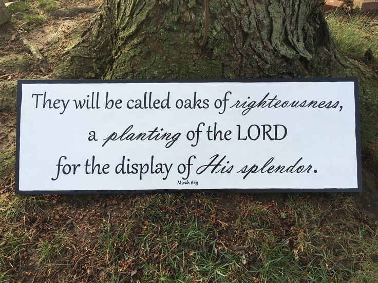 A personal favorite from my Etsy shop https://www.etsy.com/listing/286342435/wood-sign-isaiah-613-oaks-of