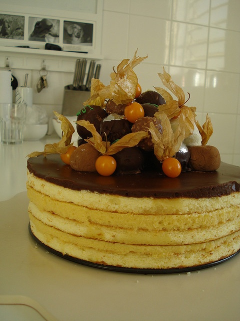 Amarula Mousse Cake with Physalis by Marcelo Monser, via Flickr