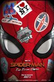 Spider-Man: Far from Home/Spider-Man: Homecoming Collection [Includes Digital Copy] [Blu-ray]