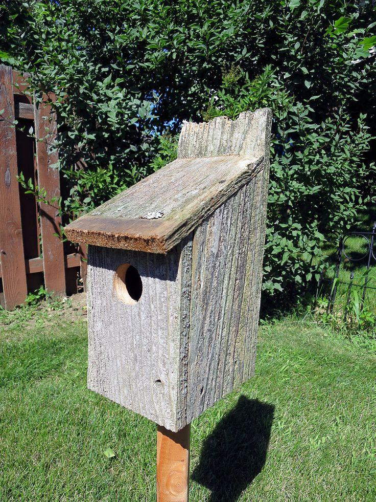 Cedar bird house finch wren sparrow by