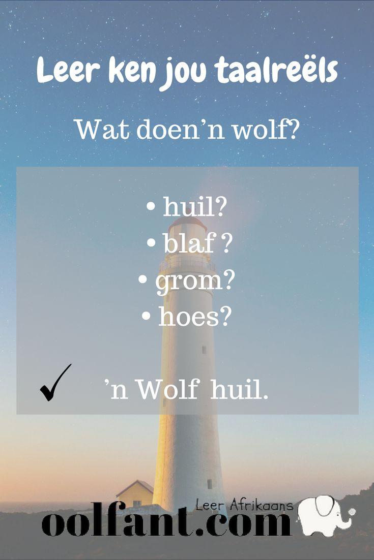 Wat doen 'n wolf? Huil.   Afrikaanse taalreëls   Leer Afrikaans ken   beterafrikaans