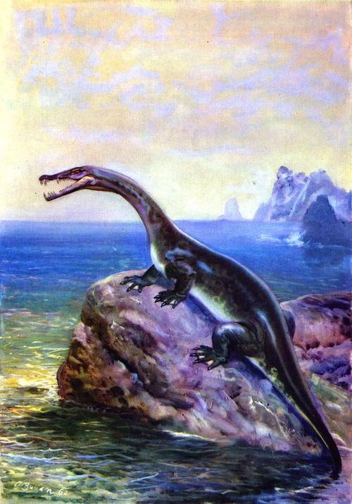 Nothosaurus by Zdeněk Burian