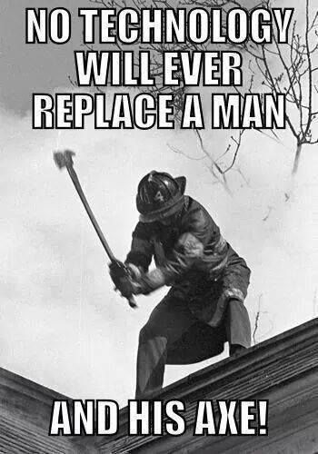 Twerk bear walmart