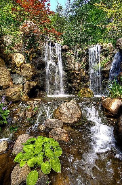 Anderson Gardens, Rockford, IL | Anderson Japanese Gardens,Rockford Illinois | Flickr - Photo Sharing!