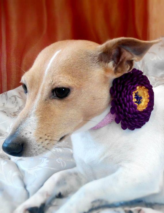 Dog collar flowerDog collarPurple dog collar by AirinFlowers #DogAcccessory #PetAccessory #DogClothes #kanzashi #PetSupplies #CollarFlower