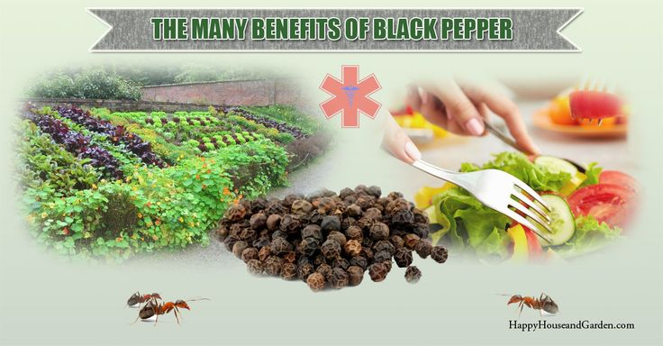 The Many Benefits Of Black Pepper