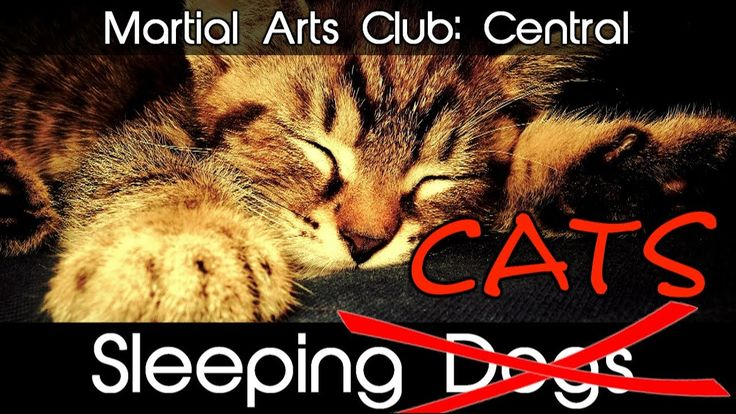 Martial Arts Club: Central Sleeping Dogs (PS4) / When cats feel left out!