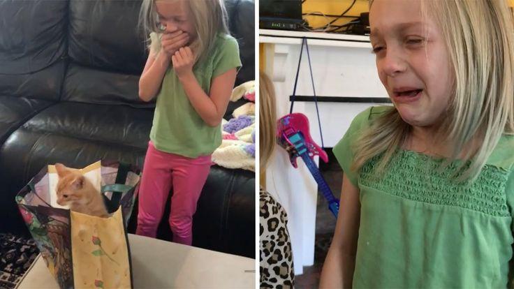 Girls Adorable Reaction To Surprise Birthday Kitten
