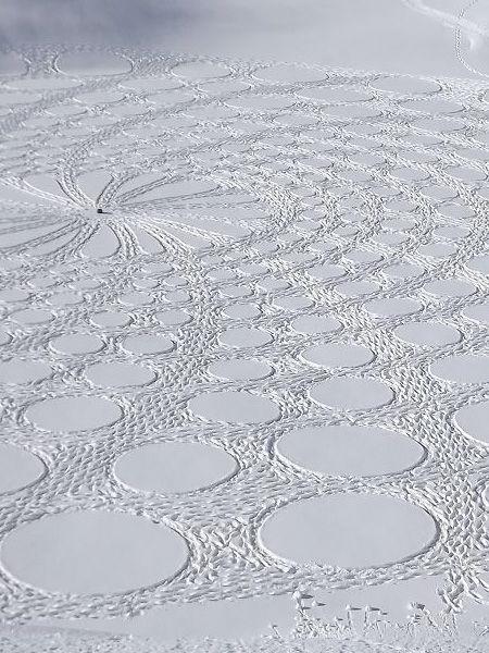 Pattern on Snow