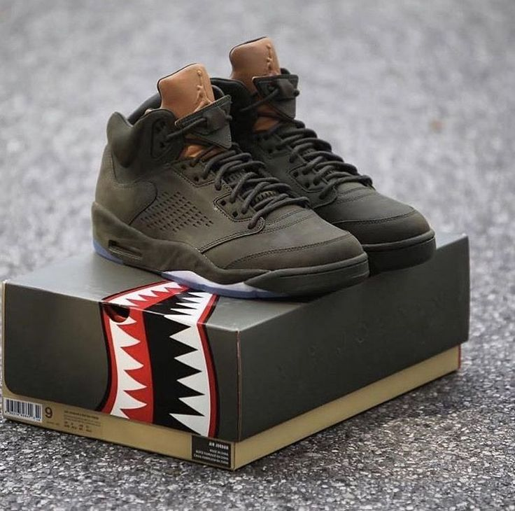 "Air Jordan 5 ""Take Flight"""