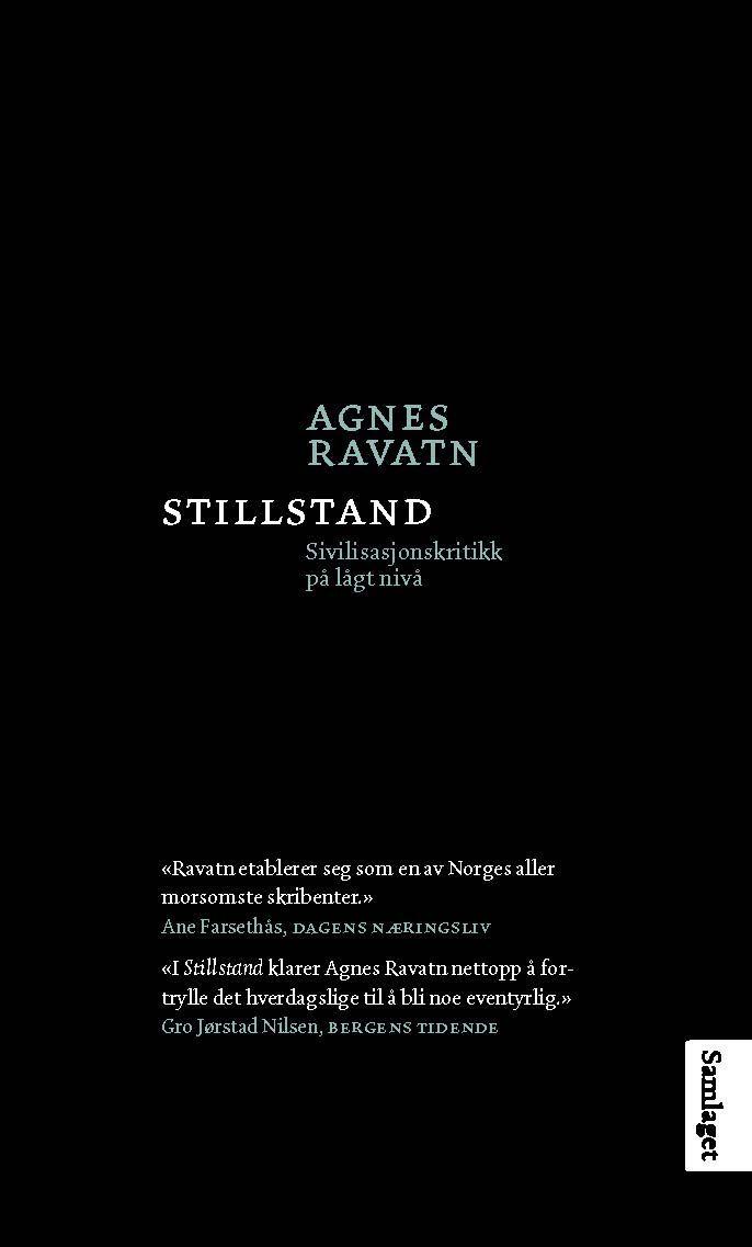 Ravatn, Agnes: Stillstand - sivilisasjonskritikk på lågt nivå