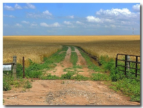 OklahomaBackroads, Oklahoma Mi, Oklahoma Sooners, Country Roads, Back Roads, Places, Dirt Roads, Weights Loss, Old Gates
