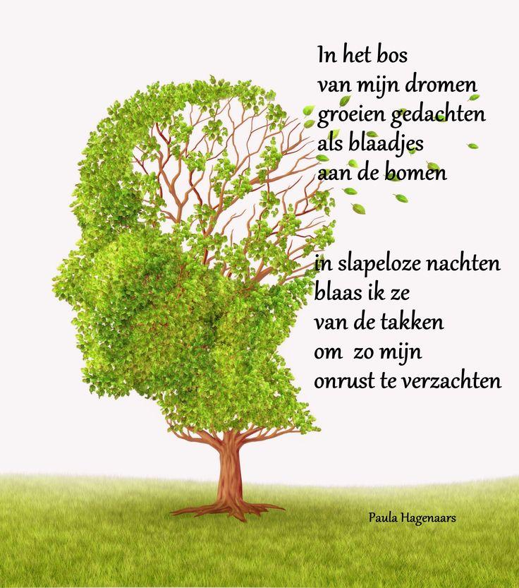 25 Unknown Facts About Dementia Gedichten Paula Hagenaars